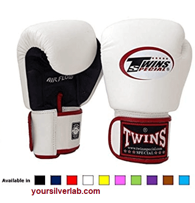 Twin Special Muay thai