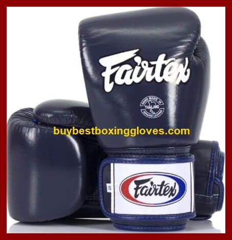 Muay Fairtex Style Thai Sparring Gloves