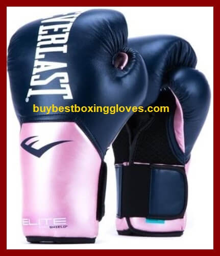 Pro-Style Everlast Training Gloves